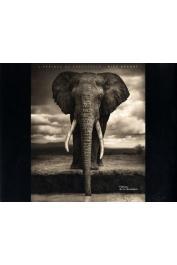 BRANDT Nick - L'Afrique au crépuscule