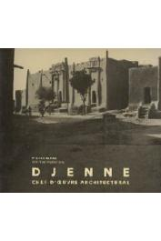 MAAS Pierre, MOMMERSTEEG Geert - Djenné, chef d'oeuvre architectural