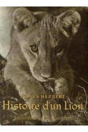 HERBERT Agnés - Histoire d'un lion
