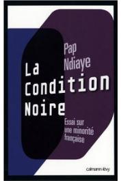 NDIAYE Pap - La condition noire: Essai sur une minorité française