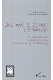 Cet ouvrage collectif regroupe six études originales, consacrées au cycle belge de l'écrivain congolais José Tshisungu wa Tshisungu, né au Kasaï en 1954 et vivant depuis 1989 au Canada
