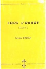 BADIAN Seydou - Sous l'orage (Kany)