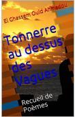 OULD AHMEDOU El Ghassem - Tonnerre au dessus des vagues (Pensées sur un monde à la dérive) version kindle